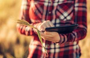 Branding, marketing & digital marketing αγροδιατροφικών επιχειρήσεων